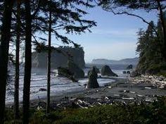 Debris Field, Washington Coast