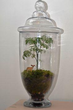 Forest Terrarium by PinkSerissa on Etsy, $150.00