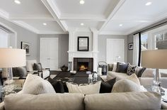 Grey and black Living Room decor