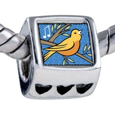 Pugster Silver Plated Photo Bead Calling Birds Photo Storybook Beads Fits Pandora Bracelet Pugster. $12.49. Bracelet sold separately. Fit Pandora, Biagi, and Chamilia Charm Bead Bracelets. It's the photo on the heart charm. Unthreaded European story bracelet design. Hole size is approximately 4.8 to 5mm