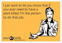 Seriously. I kill all plants i come into contact with. No joke.
