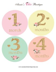 Baby girl monthly sticker Floral Baby by AnniesChicBowtique