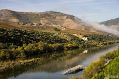 Os nossos melhores passeios de outono em Portugal | Via Viagens à Solta Blog | 30/09/2015 Como é bom andar à solta no Outono! A natureza enche-se de cor e, se às vezes chove, as folhas das árvores brilham e cheira a terra molhada. Não está muito calor, o que é ideal para se fotografar e andar a pé. As multidões do verão partiram, ficando as pessoas mais importantes para nós, com quem podemos fazer magustos ou aconchegar-nos à volta de uma lareira, onde sabe bem estar nas noites que…