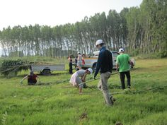 Volunteering program in summer (in cooperation with the Management Authority of  Lake Kerkini)