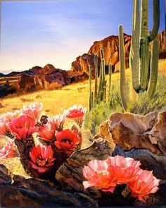 Southwest Contemporary Landscapes: Desert Blooms-Sedona AZ