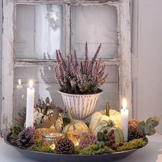 Autumn decoration inspirations for your home – Naturdeko - Dekoration Halloween Decorations, Christmas Decorations, Autumn Decorations, Decoration Inspiration, Pallets Garden, Pallet Crafts, Victorian Decor, Deco Table, Fall Diy