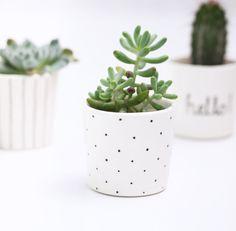 Succulent Planter // Small Plant Pot // Black and White // Polka Dot // Minimalist Scandinavian Design by BerriesForBella on Etsy https://www.etsy.com/uk/listing/451258614/succulent-planter-small-plant-pot-black