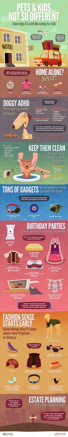 Infographics about the ways you can pamper your pet.  PS vector shapes   layer fx   textures.