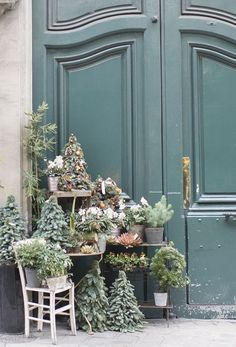 Christmas in Paris by Georgianna Lane: Florist display on Rue des Saints-Peres