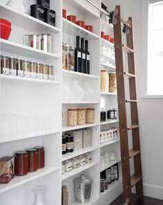 like the idea of floor to ceiling slim shelves so things dont get hidden and the ladder for getting to the top