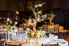Wedding reception rustic branch tree centerpiece with flowers and candle votives green brown colors Branch Centerpieces, Wedding Reception Centerpieces, Reception Decorations, Summer Wedding Colors, Green Wedding, Winter Wonderland Wedding, Winter Wedding Inspiration, Flower Branch, Rustic Flowers