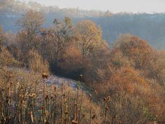 Dernier matin de l'année, Bosdarros, Béarn, Pyrénées Atlantiques, Aquitaine, France. | Flickr - Photo Sharing!