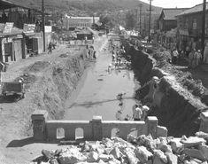 1964년 덕수궁 풍경