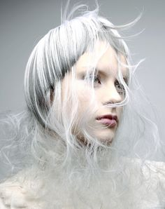 2008 Rising Star of the year 最優秀賞 Creative Hairstyles, Cool Hairstyles, Avant Garde Hair, Hair Photography, Editorial Hair, Fantasy Hair, Hair Shows, Crazy Hair, Silver Hair