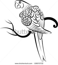 Bird vector 3 (Parrot). Parrot drawing with curl ornament decoration