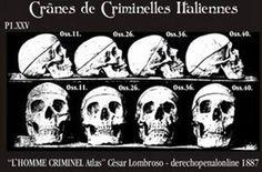 28 Ideas De Antrpologia Criminal Criminologia Antropología Forense Antropología
