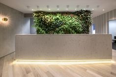 Park Clinic by Morris Selvatico Interior Design, Sydney – Australia Medical Office Design, Pharmacy Design, Retail Design, Clinic Interior Design, Clinic Design, Gym Interior, Reception Desk Design, Reception Counter, Workspace Design