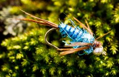Blog | Fly Fishing | Gink and Gasoline | How to Fly Fish | Trout Fishing | Fly Tying | Fly Fishing Blog - Part 5