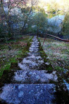 Old moss covered steps in Kruunuvuori, Helsinki, Finland