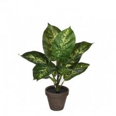 Planta artificiala decor H30 cm Plant