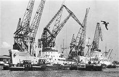 Merwehaven Rotterdam (jaartal: 1960 tot 1970) - Foto's SERC