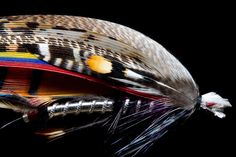 The Baron classic salmon fly step by step from FlyTyingArchive.com fly tying blog.  #flytying #flyfishing