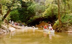 Canoe or kayak down the Green River though the Mammoth Cave National Park on trips ranging from just 3 hours to 2 nights or more! Canoe Trip, Canoe And Kayak, Kentucky Vacation, Owensboro Kentucky, Cave City, Mammoth Cave, Green River, My Old Kentucky Home, Kayaking