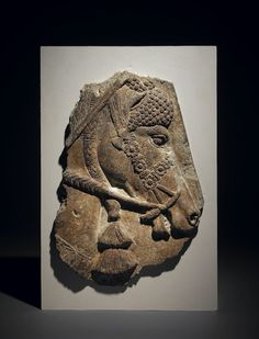 Sculpture panel: horse's head with elaborate harness facing right; this derives from a set of gypsum wall-panel reliefs; the traces of colour indicate that these sculptures were once extensively painted.       Neo-Assyrian   710BC-705BC