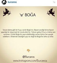 ☆ Horoscope, Gemini, Instagram Posts, News, Twins, Horoscopes, Twin, Gemini Zodiac