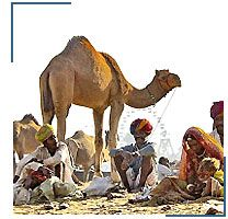Rajasthan Tour India with Nepal Tour Packages and Rajasthan Tour with Tibet.