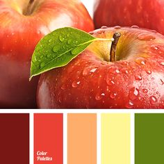 apple color, bright and saturated colors, burgundy, green color, house color schemes, house color selection, orange color, pale yellow, red apples color, red color, wine color, yellow color.
