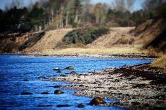 Aborg Strand #visitfyn #fyn #nature #visitdenmark #naturelovers #nofilter #natur #denmark #danmark #dänemark #landscape #assens #mitassens #vildmedfyn #fynerfin #assensnatur #vielskernaturen #visitassens #forrest #instapic #picoftheday #sea #november