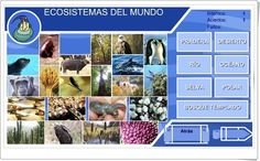 """""""Ecosistemas del mundo"""" (Ciencias Naturales de Primaria)"""