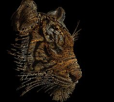 #typography #art #detailed #tiger #creative #indepth