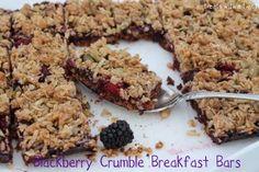 Blackberry Crumble Breakfast Bars - Treats With a Twist