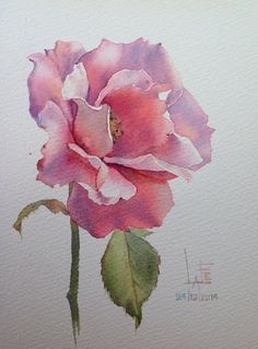 "Bien ""La Fe - Watercolor without Drawing"", ""Watercolor Flowers Archives - Page 6 of 20 - Flowers Club"", ""Watercolor by Sattha Homsawat (LaFe)"", ""M Watercolor Drawing, Watercolor Cards, Watercolor Flowers, Painting & Drawing, Drawing Flowers, Arte Floral, Botanical Art, Flower Art, Art Drawings"