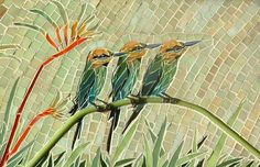 Rainbow Bee-Eaters - by, lucyc70