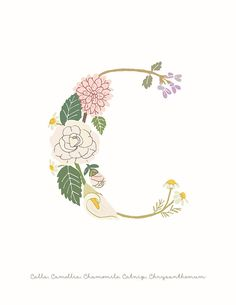 'Botanical Letter C' Art Print by dgarden Painted Letters, Monogram Letters, Sewing Labels, Flower Logo, Baby Tattoos, Photography Logos, Art Wall Kids, Watercolor Background, Character Illustration