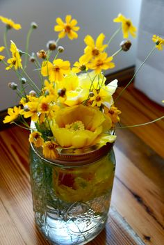 Lemonade flowers