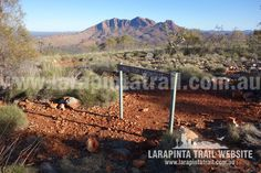 The long Larapinta Trail is one of Australia's most spectacular bushwalking and trekking experiences. It is also one Australia's newest trails and is quickly emerging as one of the most popular trails in Australia and the world. Great Western, Campsite, Trekking, Trail, Australia, River, Explore, World, Outdoor