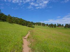 The Sawmill Trail