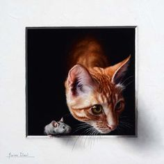Image by Marina Dieul. Illustrations, Illustration Art, Peek A Boo, Realistic Drawings, Fauna, Animal Paintings, Beautiful Cats, Pet Portraits, Cat Art