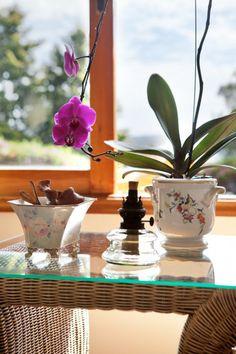 Detalhe de decoração em mesa lateral. Projeto de design de interiores para casa de campo.