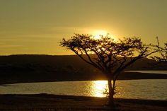"""Spioenkop Dam, Winterton: photograph by: Joanna Barrowan"" Nature Reserve, Sunrises, Horse Riding, Campsite, Perfect Place, Wildlife, Photograph, African, Horses"