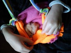 Super sweet hamster carrier - no sewing fleece WITH GUIDE, from a patchwork world: Hamster Crafts! Diy Hamster Toys, Hamster Care, Baby Hamster, Rat Toys, Hamster Treats, Guinea Pig Toys, Guinea Pigs, Hamster Stuff, Ferret