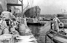 Unloading Ships at London Docks 1908