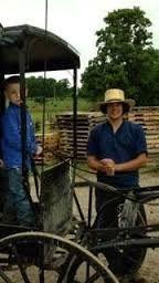 52 Best Swartzentruber Amish images in 2016 | Amish, Amish