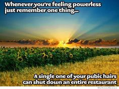 Whenever you're feeling powerless... just remember one thing... a single one of your pubic hairs can shut down an entire restaurant.