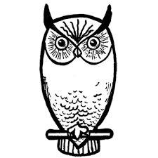 Výsledok vyhľadávania obrázkov pre dopyt owl