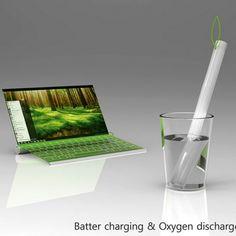 El Plantbook, es un ligero portátil compuesto por materias orgánicas que imita el modo de vida del bambú, desarrollado por los diseñadores japoneses Seunggi Baek y Hyerim Kim.
